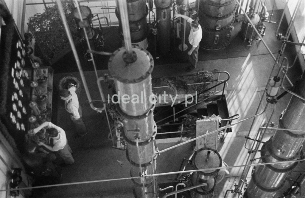 Widok z góry na krzątających się w dole niewielkiej hali fabrycznej pracowników.
