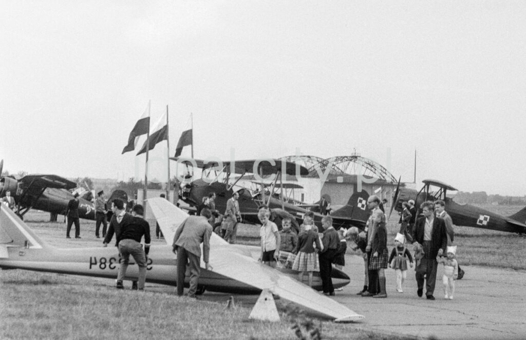 Visitors between the planes set on the grass, the Polish flag on three masts, a hangar in the background.