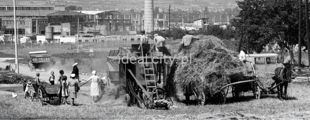 The family uses a simple harvester to collect hay from the meadow onto a cart drawn by a horse. In the background, a chimney and factory buildings.