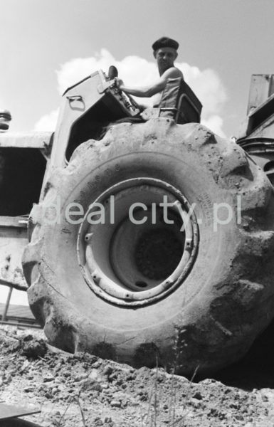 Ubrany w podkoszulek i beret mężczyzna prowadzi traktor. Ujęcie w zbliżeniu.