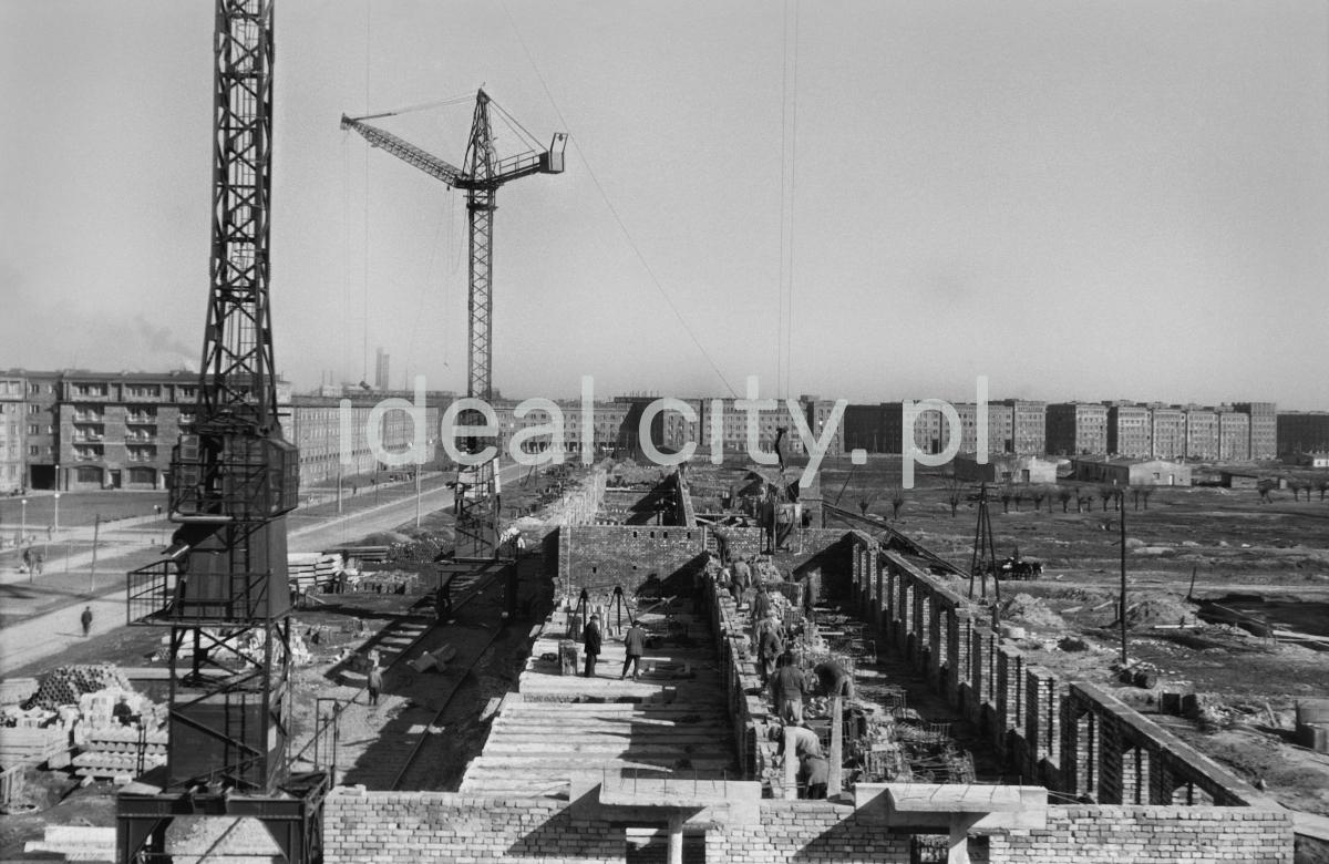 Perspektywa z wysokości na ciąg budowanych z cegły bloków mieszkalnych.