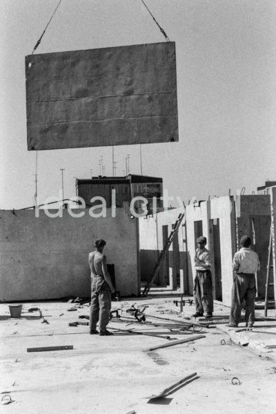 Pracownicy z pomocą dźwig układają ściany z elementów wielkopłytowych w nowobudowanym bloku.