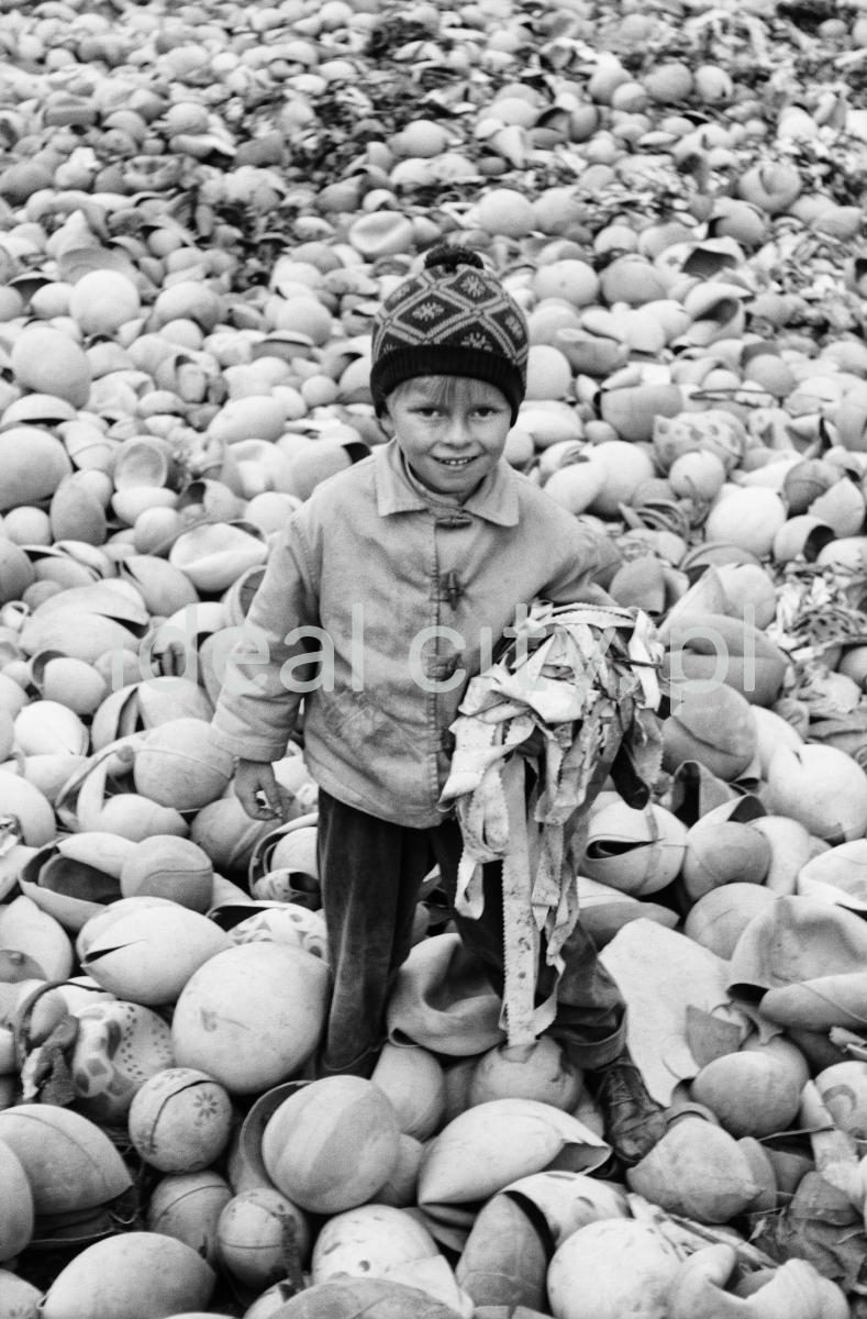 Dziecko brodzi wśród rozerwanych piłek.