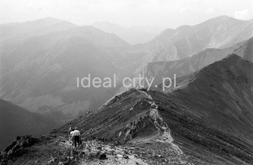 Panoramiczne ujęcie na Tatry z jednego ze wzniesień.