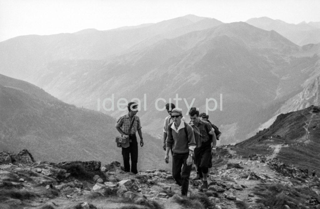 Turyści z plecakami poodążają górskim szlakiem, w tle szeroka panorama na górskie szczyty.
