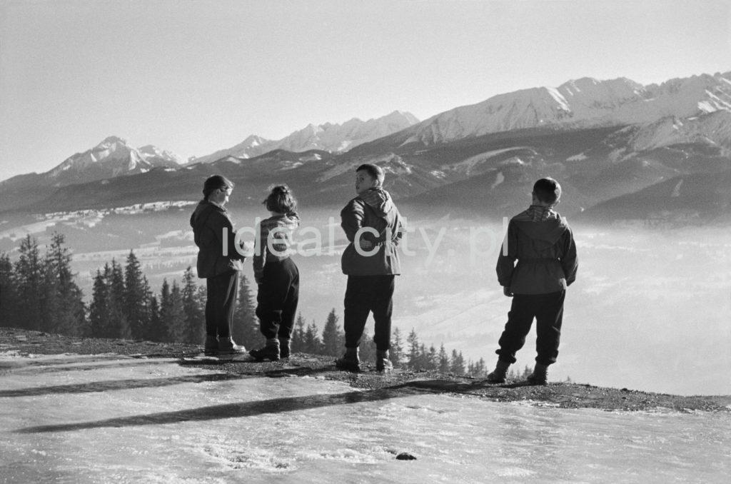 Czwórka młodych ludzi obserwuje z pokrytego śniegiem wzniesiena zimową panoramę Tatr.