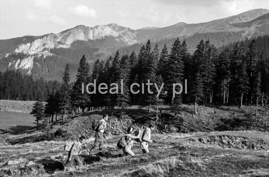 Tourists with backpacks go up the mountain trail, in the background the perspective of the Tatra peaks.