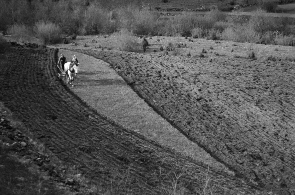 A farmer plows the field with a horse-drawn plow.