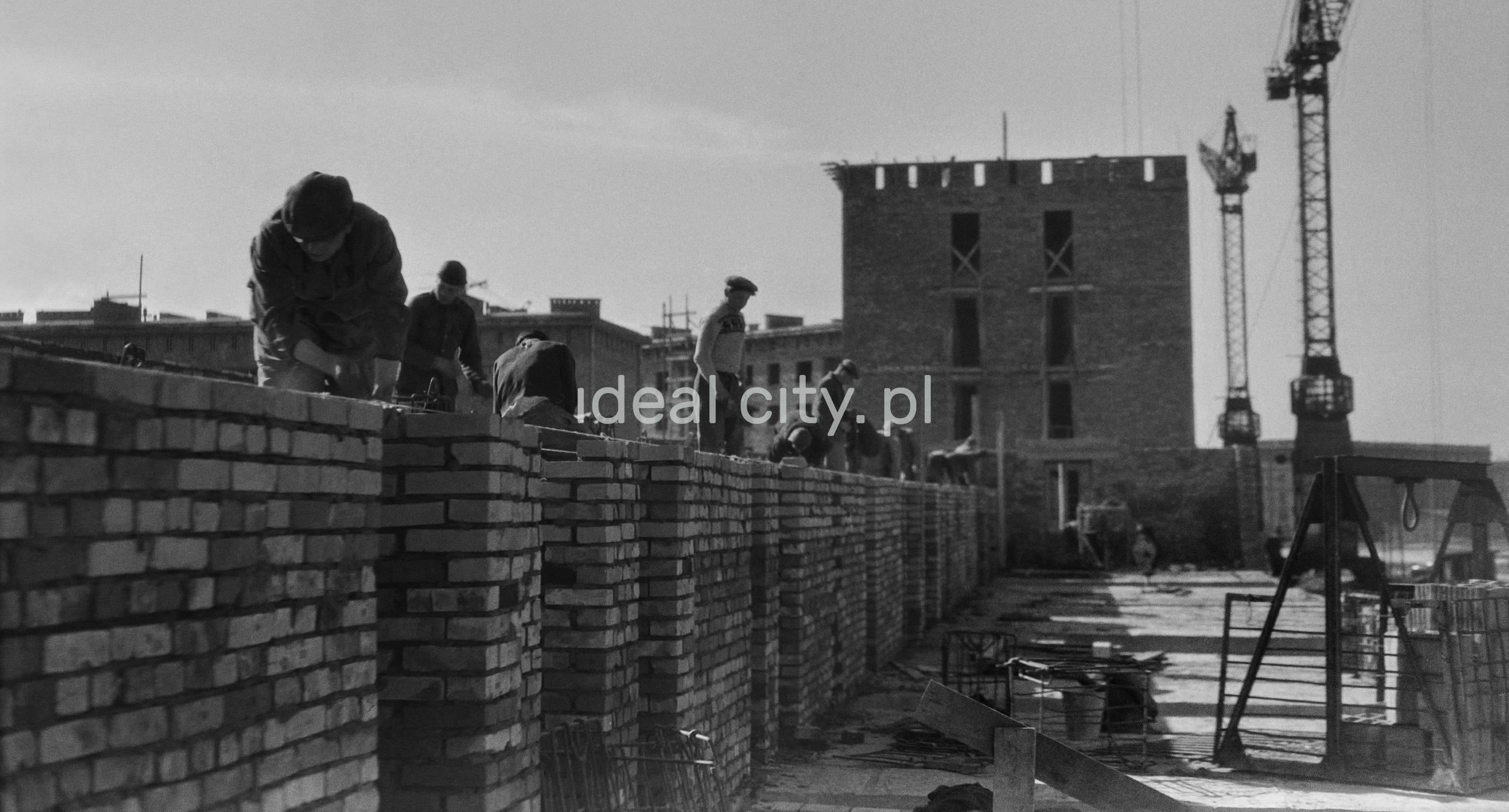 Murarze stawiają mur kolejnej kondygnacj budynku, ujęcie pod światło, w tle żurawie budowlane.