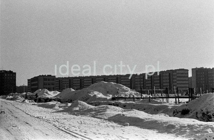 View of so-called Swedish Block (Szklane Domy Estate) from Park Ratuszowy. 1960s.  Widok na tzw. blok szwedzki (Osiedle Szklane Domy) od strony Parku Ratuszowego. Lata 60. XXw.  Photo by Henryk Makarewicz/idealcity.pl