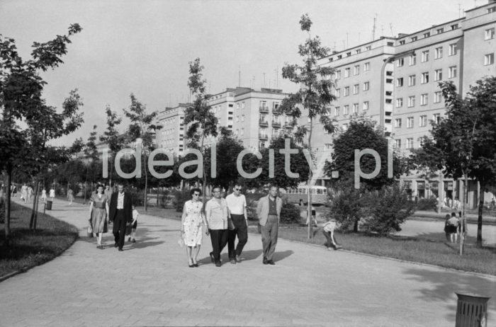 Po prawej Osiedle Hutnicze ( A-33 ), widok od strony Parku Szwedzkiego. Początek lat 60. XXw.  fot. Henryk Makarewicz/idealcity.pl
