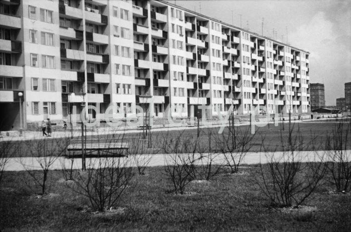 """""""Blok szwedzki"""" - modernistyczny budynek mieszkalny (zaprojektowany po 1956 roku) na osiedlu B-32 (Szklane Domy), w tle, po prawej fragment osiedla B-1 (Szkolne), koniec lat 50. XXw.  fot. Henryk Makarewicz/idealcity.pl"""