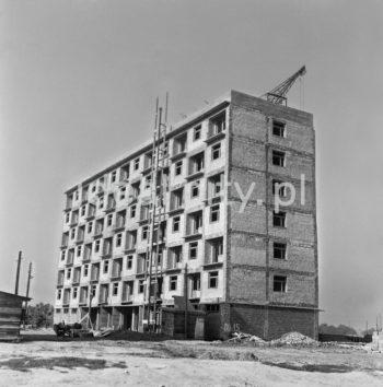 Modernistyczny budynek mieszkalny (projektowane po 1956 roku) na osiedlu D-3 (Handlowe), koniec lat 50. XXw.  fot. Wiktor Pental/idealcity.pl