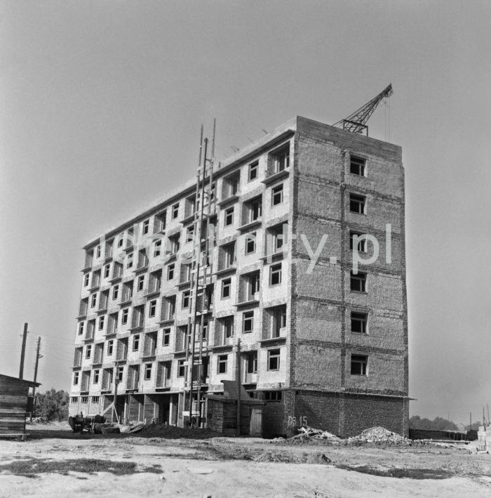 Modernistyczny budynek mieszkalny na osiedlu D-3 (Handlowe), koniec lat 50. XXw.  fot. Wiktor Pental/idealcity.pl