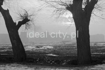 Zimowy, mglisty poranek. Widok z osiedla B-32 (Szklane Domy) w kierunku zabudowy osiedli B-31 (Centrum B), po lewej stronie osiedla C-31 (Centrum C) od strony alei Przyjaźni Polsko-Radzieckiej (obecnie aleja Przyjaźni), lata 50.  fot. Henryk Makarewicz/idealcity.pl