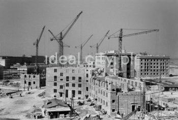 Budowa Osiedla Stalowego, ok. 1954r.  fot. Wiktor Pental/idealcity.pl