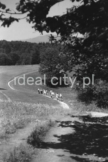 Wycieczka na Trzy Korony w Pieninach.  fot. Henryk Makarewicz/idealcity.pl