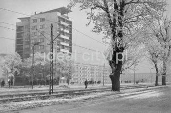 Bloki mieszkalne w sektorze D, osiedle Kolorowe. Sektor w nowej formie zaprojektowany został przez architektów Tadeusza Rembiesę i Bolesława Skrzybalskiego. Bloki tworzą luźny układ przestrzenny, zostały zaprojektowane przez architektów Józefa Königa, Andrzeja Radnickiego, Adama Fołtyna, Wacława Głowackiego i Kazimierza Karasińskiego. Budynki rozplanowane zostały w sposób harmonijny i rytmiczny, i podzielone na cztery osiedla: D-3 (Handlowe), D-2 (Kolorowe) i D-1 (Spółdzielcze) oraz D-31 (Centrum). Kształt sektora uzależniony był od pierwotnego projektu, jednak układ urbanistyczny i wysokość budynków uzależniony był od znajdującego się w pobliżu lotniska w Rakowicach - Czyżynach. Budynki posiadały kolorowe elewacje i najczęściej osiągały wysokość czterech pięter, do rzadkości należą budynki jedenastokondygnacyjne. Większość z nich to tzw. bloki szwedzkie, czyli budynki zaliczane do nowoczesnych formalnie. W sektorze D do nowoczesnych gmachów należała także szkoła zaprojektowana przez Kazimierza Karasińskiego. Lata 60.  fot. Henryk Makarewicz/idealcity.pl