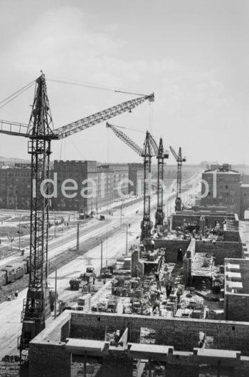 Budowa Osiedla Hutniczego (na wprost), po lewej Osiedle Szkolne. Pierwsza połowa lat 50. XXw.   fot. Wiktor Pental/idealcity.pl