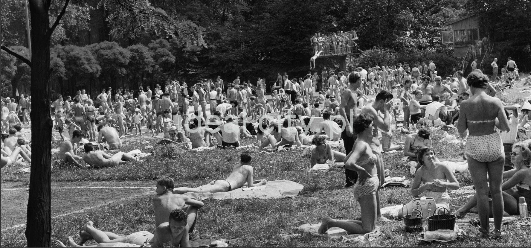 Tłum ludzi wypoczywających nad otwartym basenem, w głębi skacze do wody na głowę mężczyzna.