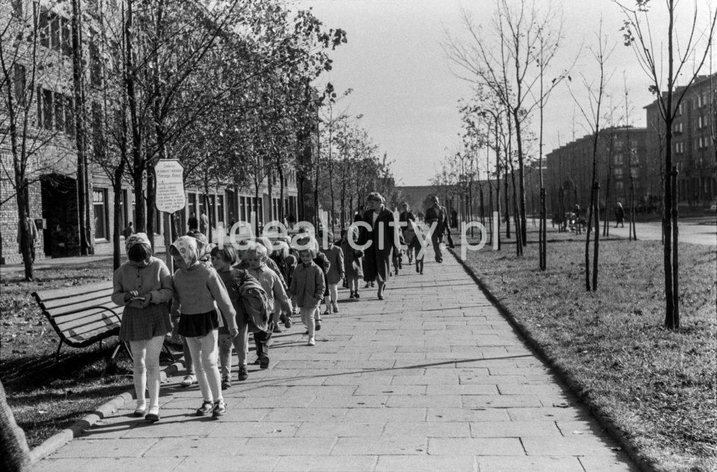 Wycieczka szkolna idzie wzdłuż szerokiego chodnika, po bokach nasadzenia drzew, po lewej bloki mieszkalne.