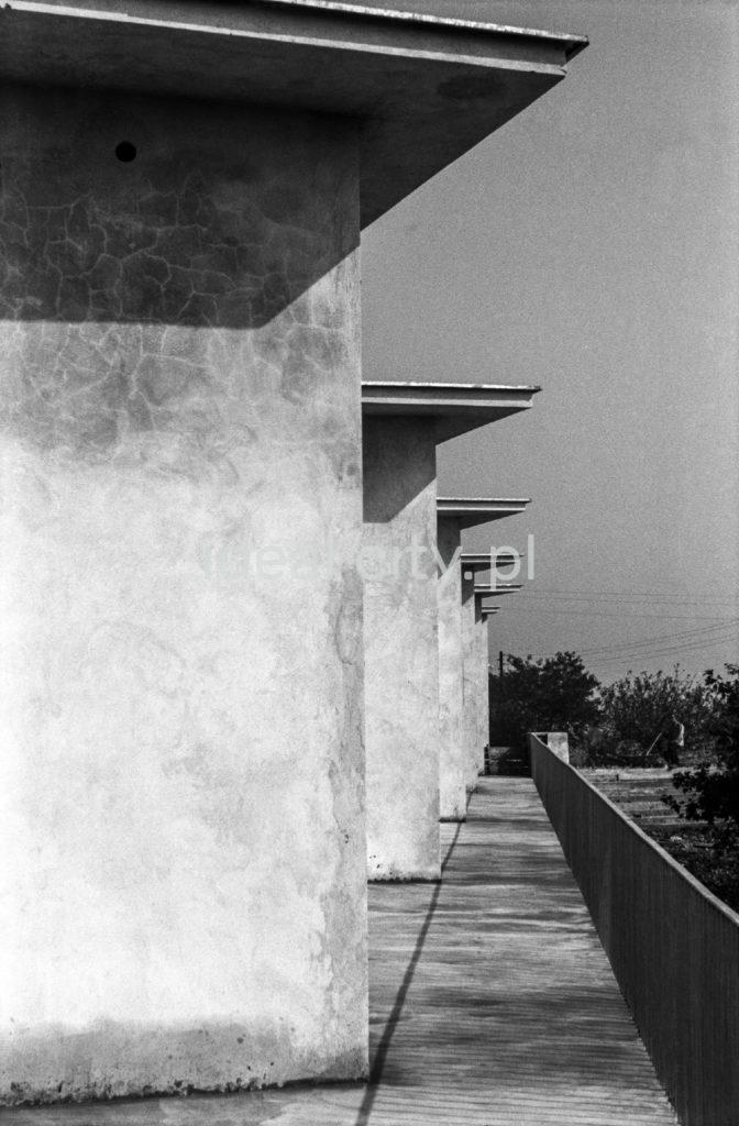 Kompleks nowo ukończonych modernistycznych pawilonów.